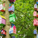 65 vogelhuisjes opgehangen in Sonsbeeckpark